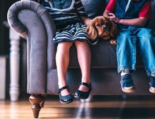 Sleep apnea in children linked to high blood pressure in teen years